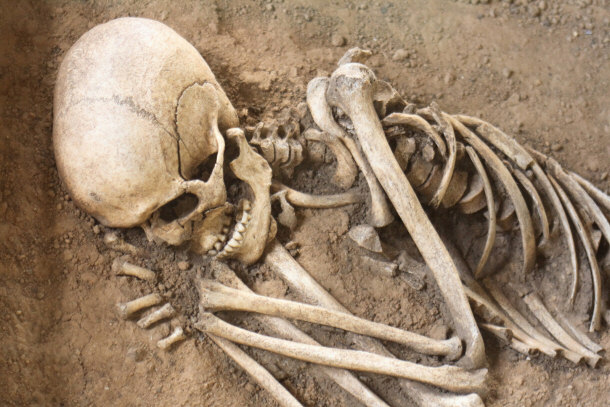 Жительница Подмосковья в своей квартире нашла человеческие кости