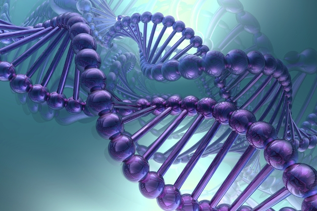 Найдены гены, благодаря которым некоторые люди выглядят младше своего возраста