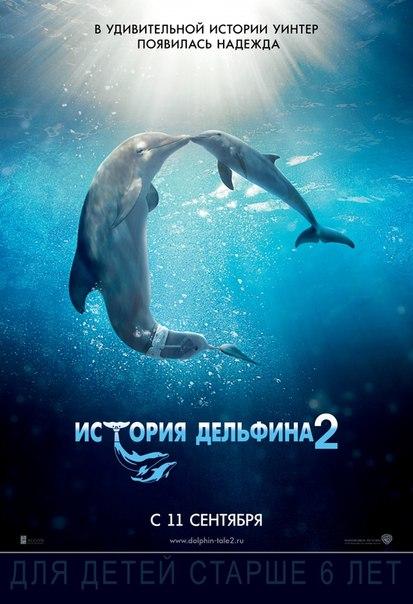 История дельфина-2  2D